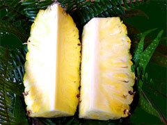 Sliced Pineapple Fruit
